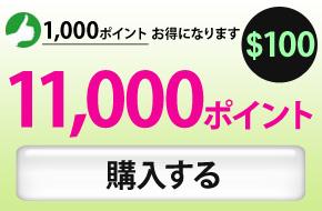 11000ポイント購入